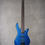5 String Fretless
