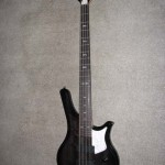 Galveston 8 String Bass (Paired)